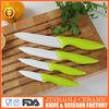 5pcs Ziconium Oxide ceramic fruit knife
