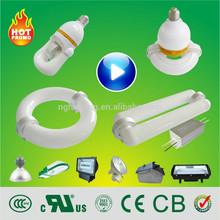 HB 23w 40w 80w 120w 150w 200w 300w 400w lvd induction bulb