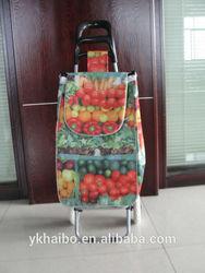 2015 New style fruit style shopping bag