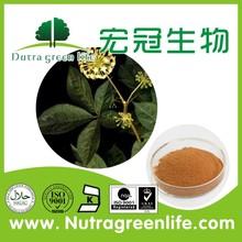 similar with Ginseng saponin Siberian Ginseng Extract Eleutheroside B+E 0.8% 1.2% 1.5% Pharmaceutical grade