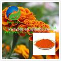 Natural Marigold Flower Extract / Zeaxanthin for Improving Eyesight