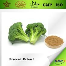 GMP&KOSHER BNP Supplies 100% Natural Broccoli Seed Extract Powder Sulforaphane