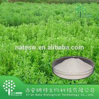 High Quality Stevia leaf extract Buy Steviol Glycoside 90%-95%