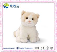 Plush kitty with unbelievable price