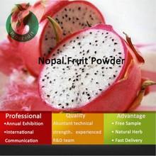 dragon fruit/dragon fruit powder