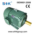 ie2 motor eléctrico de inducción de alta eficiencia