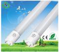 luz del tubo fluorescente