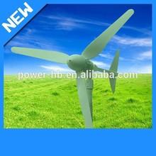 1000W Hybrid Solar Generation Wind Power