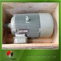 la turbina de viento generador de imán permanente
