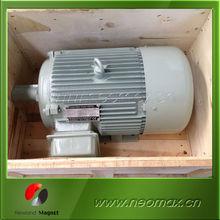 Wind Turbine Permanent Magnet Generator