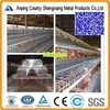 hot sales used poultry cage 20 years lifetime with Auto water system