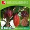 Manufacturer sales cocoa cocoa powder