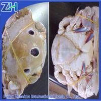 Soft shell wholesale Redspot swimming crab/ Portunus sanguinolentus frozen card meat