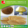 Manufacturer sales tongkat ali extract powder