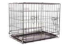 popular design Black Pen metal folding dog puppy crate training Cage Kennel