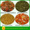 fornecedor de alimentos de conservas de legumes frescos com materiais