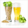 la cebada para la fabricación de cerveza alimentaciónanimal cebada origen australia