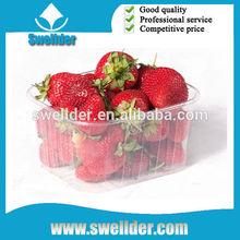 OEM plastic parts strawberry plastic tray