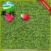 tennis court or golf artificial grass