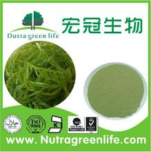 fucoidin 10%-98% fucoidan Fucoidan Extract Sargassum extract seaweed extract