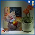 pet stampa 3d lenticolare 3d orso quadretto per gift
