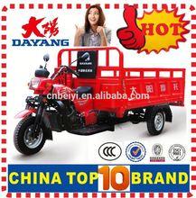 China BeiYi DaYang Brand 150ccl/175cc/200cc/250cc/300cc Three wheel Cargo motorcycle Made in China