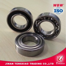 Stainless steel bearings 6009ZZ home applicance bearings