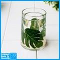 tropical diseñador de hojas de acrílico transparente de plástico vaso de cuarto de baño
