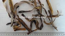 Dried Earthworm /lumbricus /Di Long