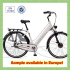 Trendy designed 36V Hidden Battery Electric Bicycle