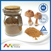 NSF-GMP Audited Supplier Best Polysaccharides Agaricus Blazei Powder, Agaricus Blazei Extract Powder