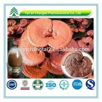 GMP Certificate Popular Herbal ganoderma lucidum extract