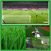 Factory best selling for soccer vinyl artificial grass floor tile