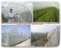 anti filet d'insecte de jardin (usine)