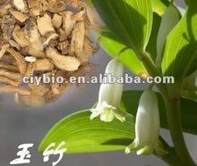 herbal polygonatum odoratum root extract for skin care
