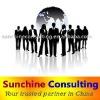 China procurement consultancy services