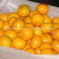 Sweet baby mandarin citrus fruits