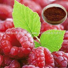 Antioxidabt Raspberry Extract