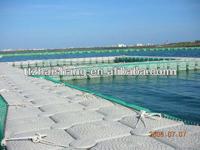 System Fish Fish Farming System