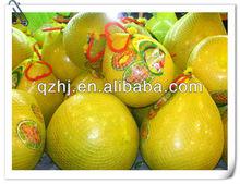 China honey pomelo for sales, fresh, ncie