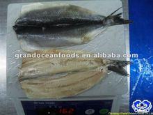 pescados y mariscos congelados atlántico filete de arenque iqf