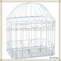 cor branca de metal decorativa bird gaiolas