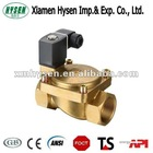 2 Way High Pressure AC220V Solenoid Valve