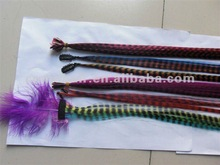 Very Fashionable Feather hair extensions