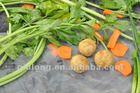frozen food good taste takoyaki origin China 2014