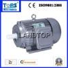 Ltp Y Series 30 hp motor