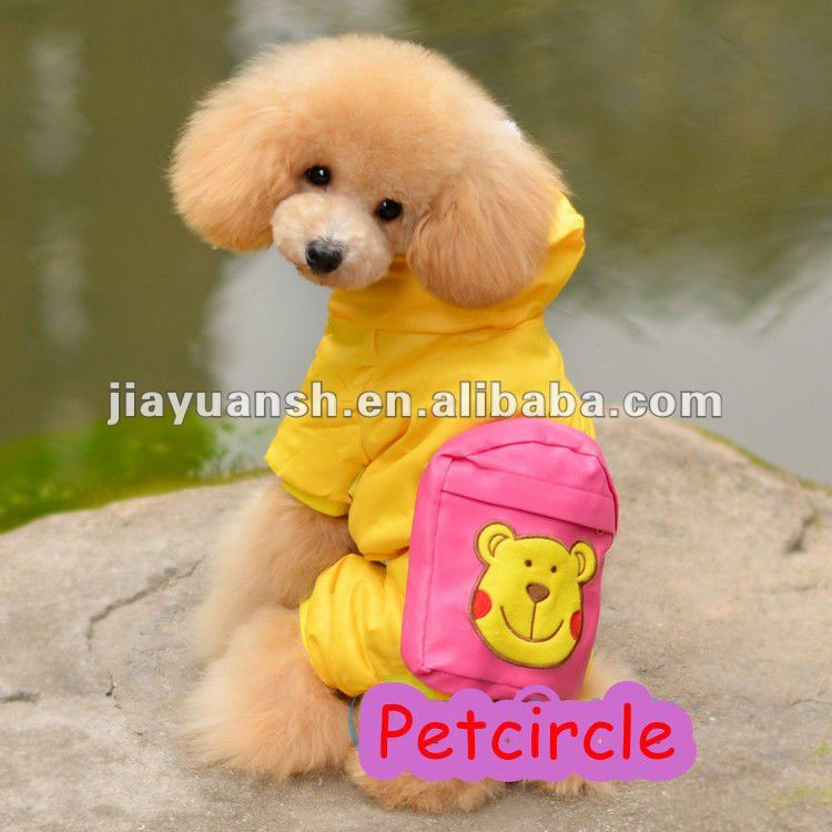 Yellow bear hot sale winte