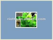 Natural Burdock Root Extract with Arctiin powder