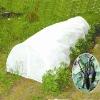 vegetable growing garden green house