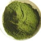 Organic Wheat Grass Powder/ Health Green Drink Powder - Certified by EU and Nop